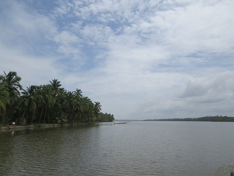 Kavvayi Backwater at Payyanur