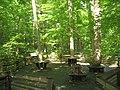 Piedmont Trail - panoramio.jpg
