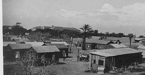 Kfar Masaryk - Kfar Masaryk, circa 1940-1950