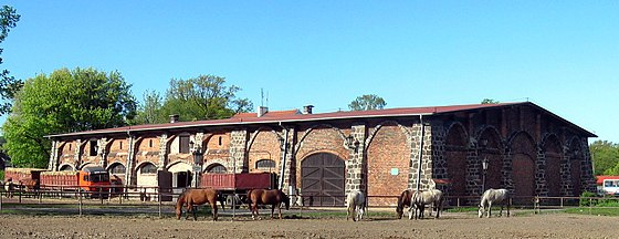 A large stud farm in Gdynia, Poland