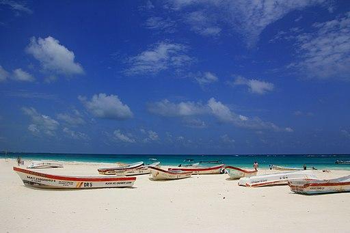 best tulum tours Playa Paraíso, Tulum, México