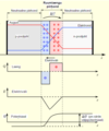 Pn-junction-equilibrium-graph.ee.png