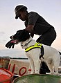 Police dog team trained in UK collects vital evidence to help prosecute suspected pirates in the Seychelles (6436829959).jpg