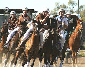 Polocrosse - Playing polocrosse in NSW, Australia