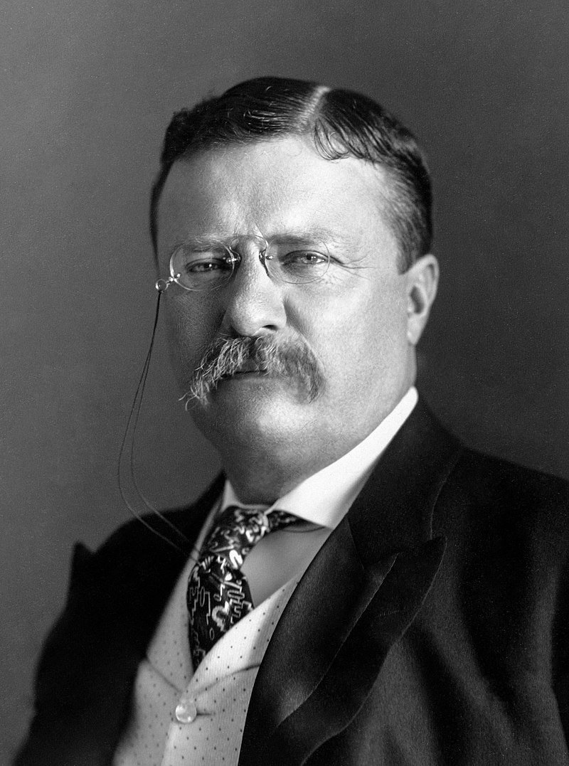 President Roosevelt - Pach Bros (cropped).jpg