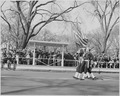 President Truman attends Army Day parade in Washington, D. C. He is viewing the parade from the reviewing stand. - NARA - 199607.tif