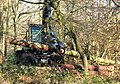 Processing the Trees in Wendover Woods - geograph.org.uk - 1185830.jpg
