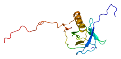 Protein FRS2 PDB 1xr0.png