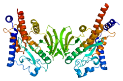 Protein PTPN22 PDB 2p6x.png