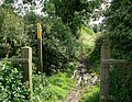 Public Bridleway to Sapcote - geograph.org.uk - 511402.jpg