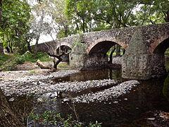 Puente Camino Real.
