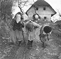Pustne šeme v Malih Lipljenih 1964 (3).jpg