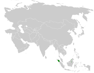 Blue-wattled bulbul - Image: Pycnonotus nieuwenhuisii distribution map