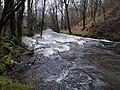 Río Umia a su paso por Rivela.jpg