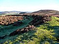 Rampart on the Fallburn Hill fort - geograph.org.uk - 1059023.jpg