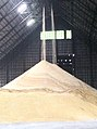Raw Sugar Production in the Philippines.jpg