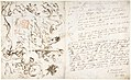 Rearing Horse and Trainer, drawn on a letter. Verso- Studies of Women and Children MET DP804205.jpg