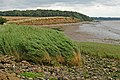 Red Cliff, North Ferriby - geograph.org.uk - 528935.jpg