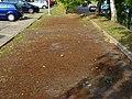 Remscheider Straße Pirna (42731130490).jpg