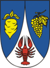 Coat of arms of Řepiště