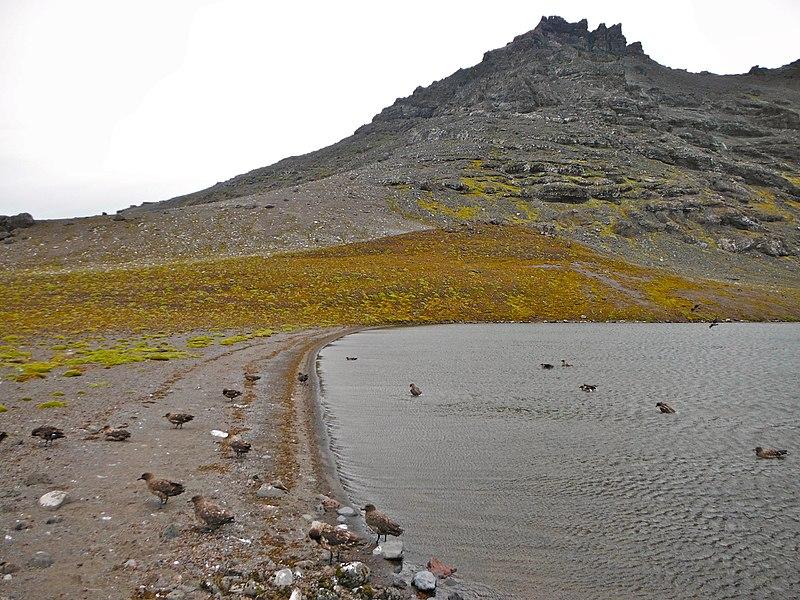 File:Rive sud du Lac Perdu - panoramio.jpg