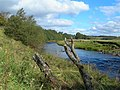 River Ayr - geograph.org.uk - 569723.jpg