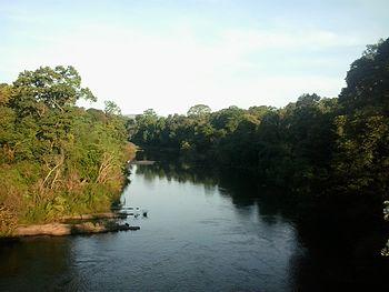River Bhadra.jpg