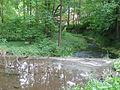 River Lossa Finneck.JPG