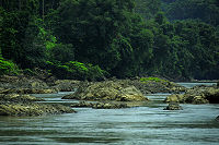 River Stone C.JPG