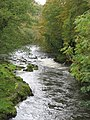 River Teifi, Maesycrugiau - geograph.org.uk - 359806.jpg