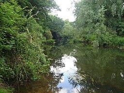 River Wensum4