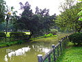 Riverside of Youth Park.jpg