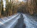 Road in The Warren - geograph.org.uk - 1670671.jpg