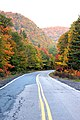 Road of Colours.............& More (14913865673).jpg
