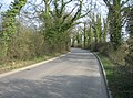 Road to the sewage works - geograph.org.uk - 1237965.jpg