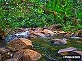 Rocks and River.jpg