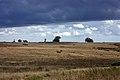 Rosedale Intake, above Danby - geograph.org.uk - 908379.jpg
