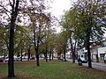 Rudnik nad Sanem - park (04).jpg