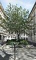 Rue Scarron (Paris) 01.jpg
