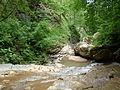 Rufabgo River 005.jpg