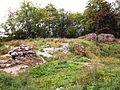 Ruiny Zamku w Wąbrzeźnie 3.jpg