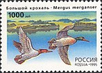 Russia stamp 1995 № 244.jpg