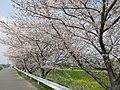 Ryusenji-River-1.jpg