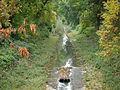Rzeka Jasień.JPG