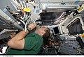S125-E-006533 - Scott Altman looks through an overhead window of Atlantis during STS-125.jpg