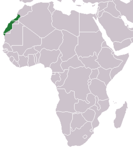 Saharan Shrew area.png