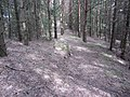 Salakas, Lithuania - panoramio (190).jpg
