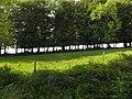 Salers , pays de pierre et de grands espaces, situé entre Dordogne et Puy-Mary - panoramio (15).jpg