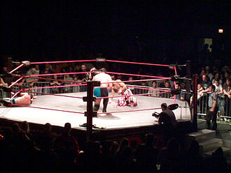 Impact Wrestling - For most of its history, Impact Wrestling has used a hexagonal ring
