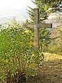 San Lorenzo in Villore-cross.jpg